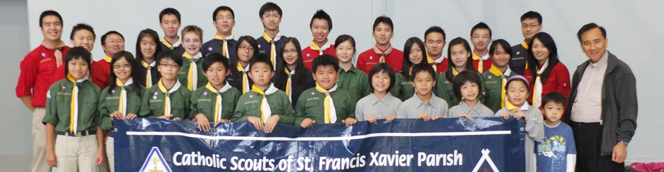 scouts-banner